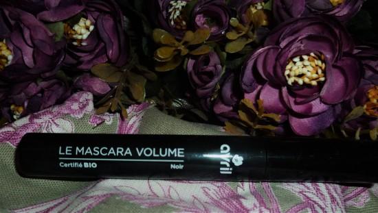 mascara avril (2)