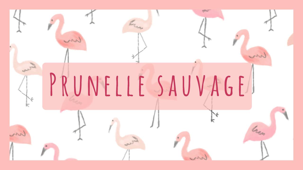Prunelle Sauvage